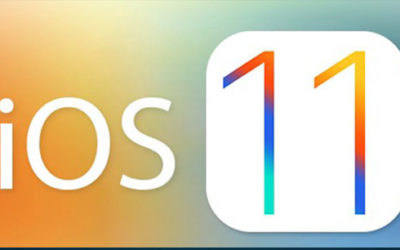 Want to make your app compatible for iOS 11 and submit your app to app store ?